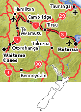 Waitomo_-_Rotorua.png