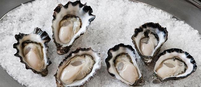 oyster-4.jpg